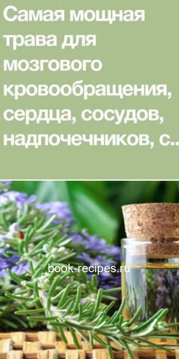 Самая мощная трава для мозгового кровообращения, сердца, сосудов, надпочечников, суставов, кожи, волос и не только
