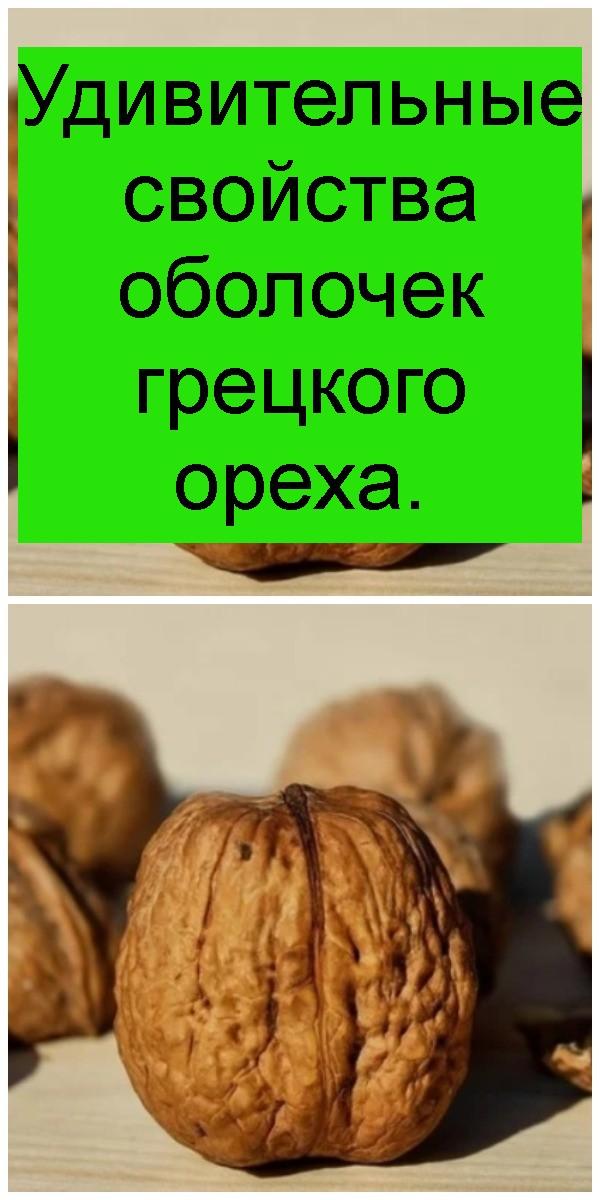 Удивительные свойства оболочек грецкого ореха 4